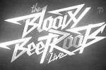 The Bloody Beetroots - Live - Eurockéennes 2013